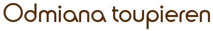 Odmiana toupieren